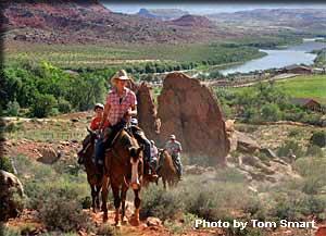 Professor Valley Horse back riding